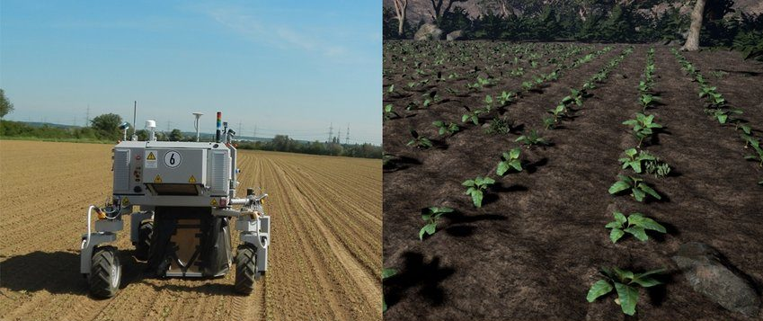 Agriculture computer vision simulation